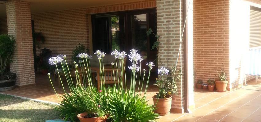 Porche, Jardin Estilo contemporaneo Color marron, verde, beige  diseñado por Arquigestiona | Arquitecto Técnico