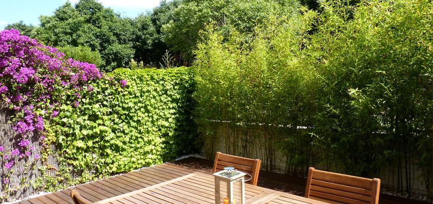 Terraza style contemporaneo color marron  diseñado por Eva Vidal Mateu - Taller de Paisatge | Paisajista