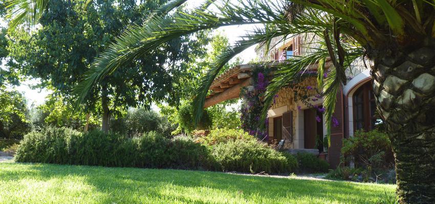 Porche, Exterior, Jardin Estilo mediterraneo Color verde, rosa, marron  diseñado por Eva Vidal Mateu - Taller de Paisatge | Paisajista