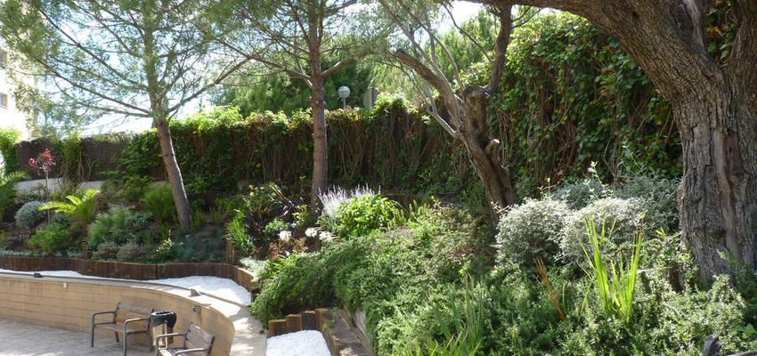 Jardin Estilo mediterraneo Color verde, verde, marron  diseñado por Eva Vidal Mateu - Taller de Paisatge | Paisajista | Copyright www.tallerdepaisatge.com