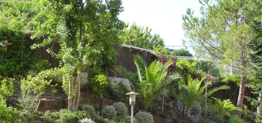 Jardin style mediterraneo color verde, verde, marron  diseñado por Eva Vidal Mateu - Taller de Paisatge | Paisajista | Copyright www.tallerdepaisatge.com
