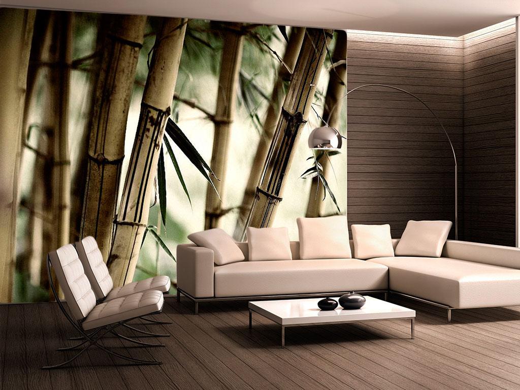 Sala de la tv salon style moderno color beige marron blanco for Bambu seco para decoracion